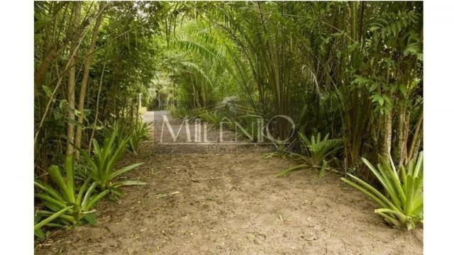 Terreno à venda em Taipu de fora, Maraú cod:57863649 - Foto 13