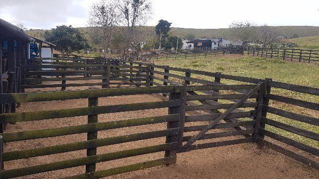 Itapetininga Região Fazenda 100 Alqueires - Foto 8