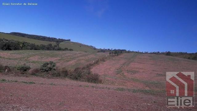 Fazenda para Plantio e Pastagem em Santa Terezinha - Foto 5