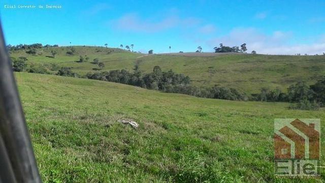 Fazenda para Plantio e Pastagem em Santa Terezinha - Foto 3