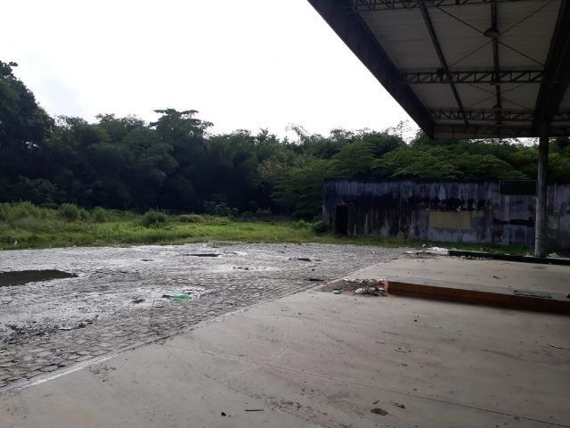 Terreno 5 hectares 100% plano px. do centro de Jaboatão velho - Foto 4
