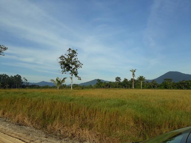 Fazenda Plana em Itapoá com Valor de Ocasião, Aceita parte em Permuta - Foto 19