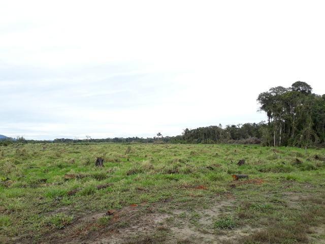 Fazenda Plana em Itapoá, Criação de Gado ou Plantio, Aceita Parte em Permuta - Foto 11