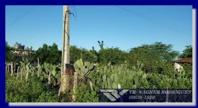 VR-Belíssima Fazenda 130ha com Estrutura, Localização Privilegiada, Valor Super Atrativo - Foto 14