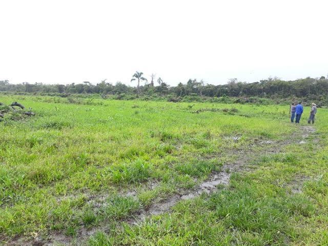 Fazenda Plana em Itapoá, Criação de Gado ou Plantio, Aceita Parte em Permuta - Foto 20