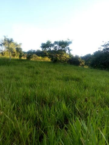 Sitio,granja de 11 hectare - Foto 4