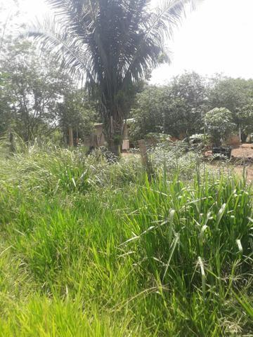 Terreno Bom e barato - Foto 2