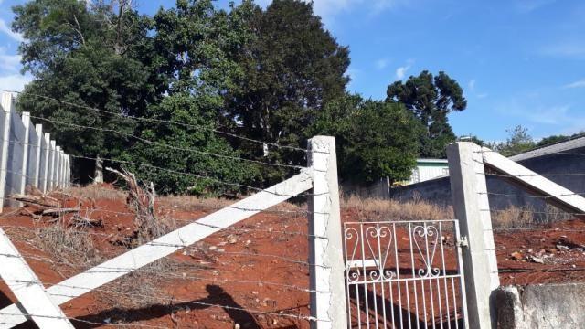 Terreno à venda em Estrela, Ponta grossa cod:1120 - Foto 3