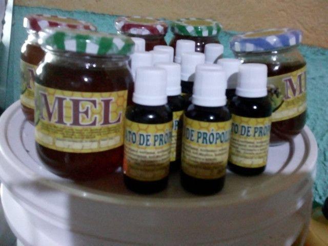 Agora pertinho de vc ,o mais puro mel silvestres distriuidora direto do apiário
