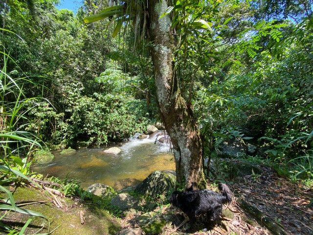 Cód.: 1331 - Linda chácara com cachoeira - JR IMÓVEIS - Foto 11