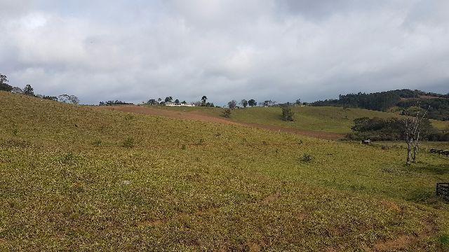 Itapetininga Região Fazenda 100 Alqueires - Foto 10