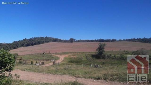 Fazenda para Plantio e Pastagem em Santa Terezinha - Foto 19