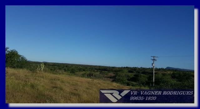 VR-Belíssima Fazenda 130ha com Estrutura, Localização Privilegiada, Valor Super Atrativo - Foto 2