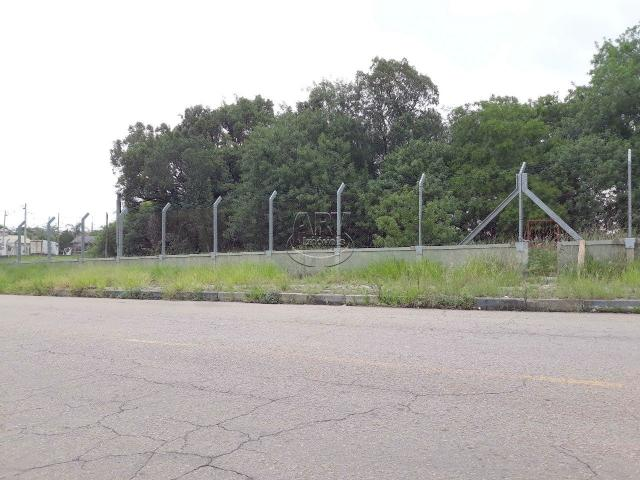 Terreno à venda em Distrito industrial, Cachoeirinha cod:2575 - Foto 2