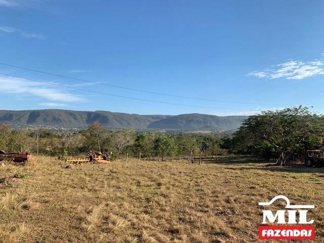 4 km de margens do Rio Araguaia. Fazenda 96 alqueires 464.64 Hectares - Aragarças-GO - Foto 12