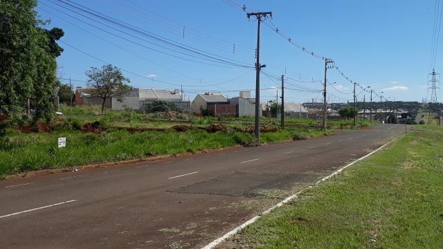 8073 | terreno para alugar em jd. rebouças, maringá - Foto 4