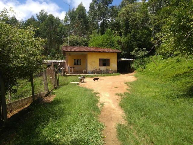 Vendo sítio em Caucaia do alto cotia - Foto 7