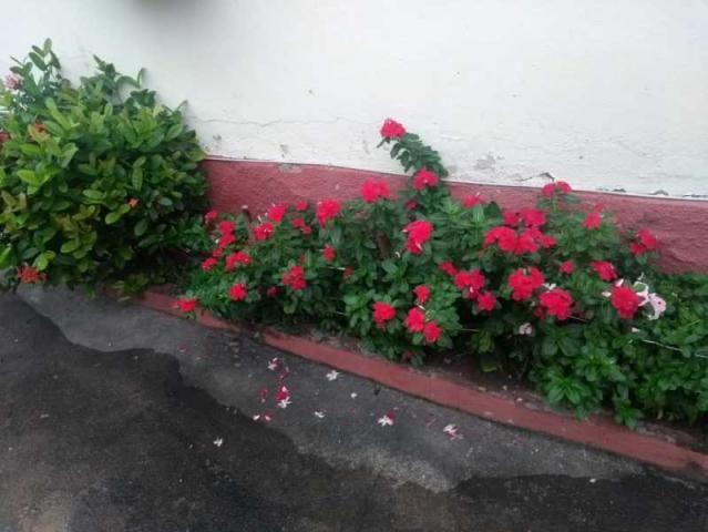 Apartamento à venda com 2 dormitórios em Madureira, Rio de janeiro cod:MIAP20333 - Foto 2