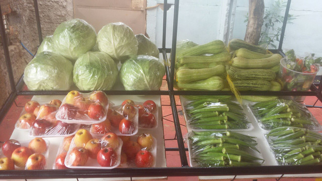 verduras Orgânicas alface etc..
