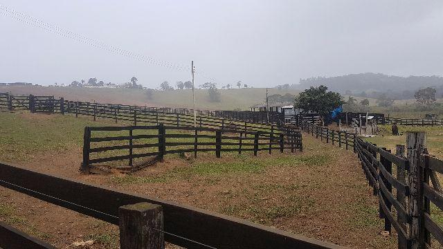 Itapetininga Região Fazenda 100 Alqueires - Foto 6