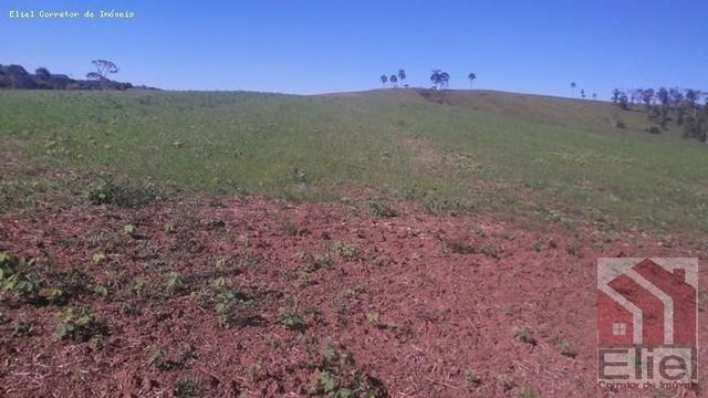 Fazenda para Plantio e Pastagem em Santa Terezinha - Foto 14