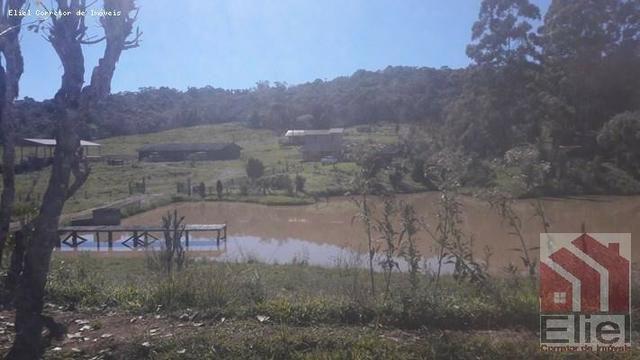 Fazenda para Plantio e Pastagem em Santa Terezinha - Foto 16