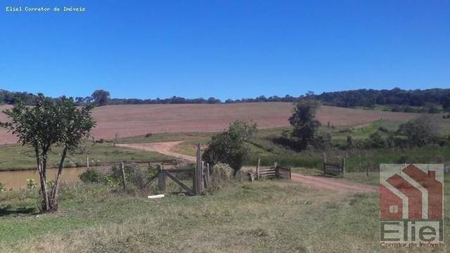 Fazenda para Plantio e Pastagem em Santa Terezinha - Foto 2