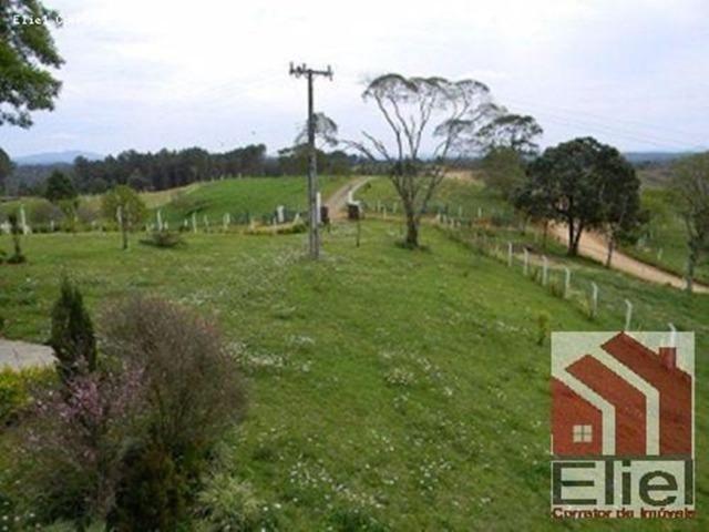 Fazenda Linda, Ideal Até para se Montar um Hotel Fazenda - Foto 20
