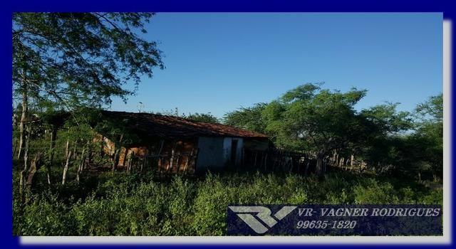 VR-Belíssima Fazenda 130ha com Estrutura, Localização Privilegiada, Valor Super Atrativo - Foto 10