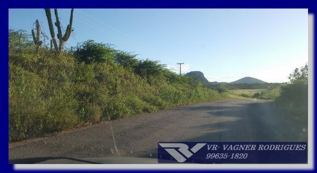 VR-Belíssima Fazenda 130ha com Estrutura, Localização Privilegiada, Valor Super Atrativo - Foto 15