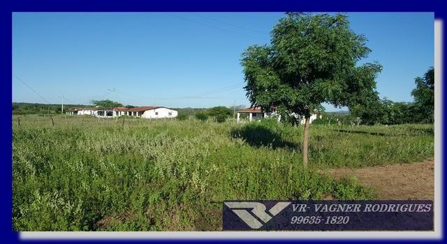 VR-Belíssima Fazenda 130ha com Estrutura, Localização Privilegiada, Valor Super Atrativo - Foto 3