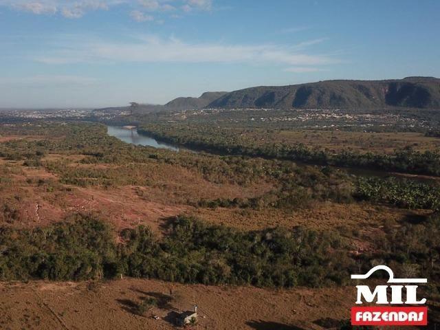 4 km de margens do Rio Araguaia. Fazenda 96 alqueires 464.64 Hectares - Aragarças-GO - Foto 5