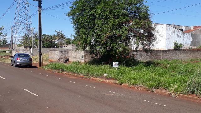 8073 | terreno para alugar em jd. rebouças, maringá - Foto 5
