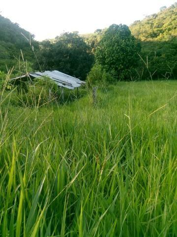 Sitio,granja de 11 hectare - Foto 2