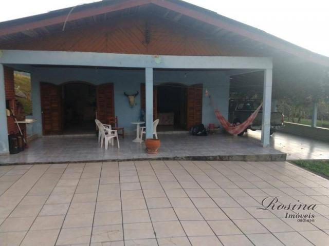 Área à venda, 451368 m² por R$ 0,11 - Alexandra - Morretes/PR - Foto 14