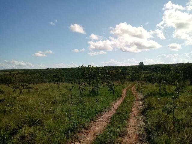 Fazendinha 30.000 mil m2, ótima localização em Três Marias. - Foto 9