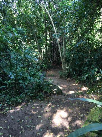 Cód.: 1331 - Linda chácara com cachoeira - JR IMÓVEIS - Foto 5