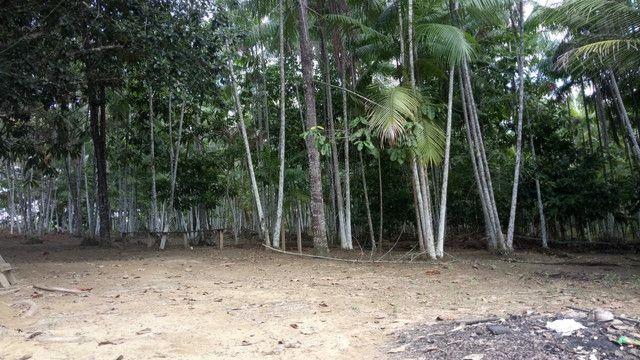 Vendo terreno ou troco por casa em Macapá  - Foto 3
