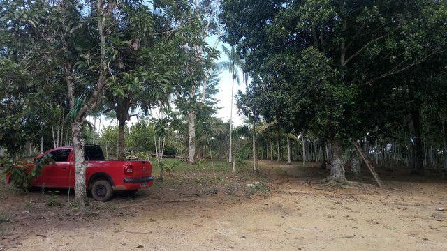 Vendo terreno ou troco por casa em Macapá  - Foto 5