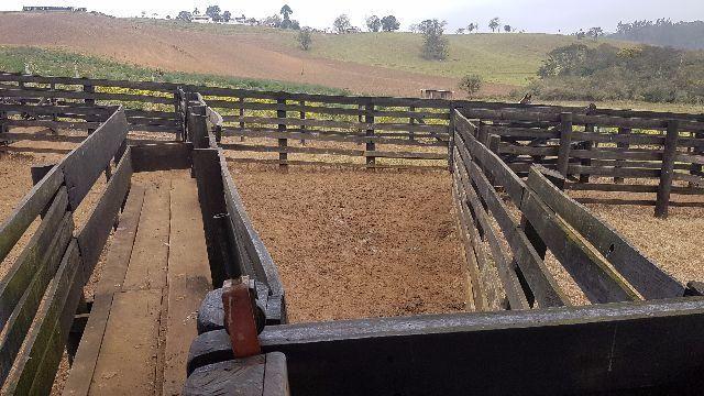 Itapetininga Região Fazenda 100 Alqueires - Foto 7
