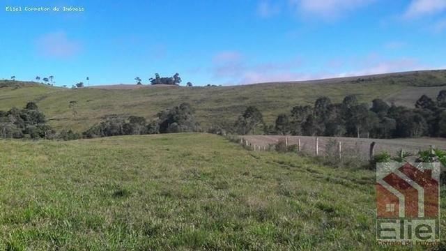 Fazenda para Plantio e Pastagem em Santa Terezinha - Foto 4