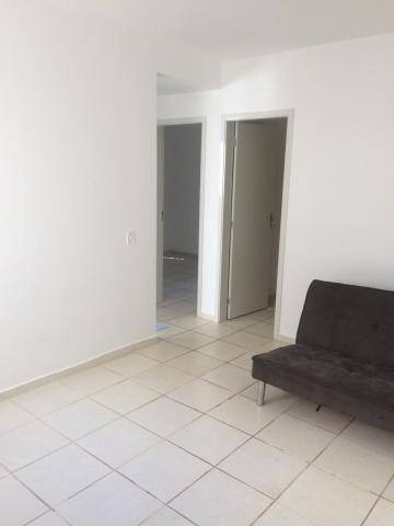 Apartamento para alugar com 2 dormitórios em Jardim palmares, Ribeirão preto cod:14451