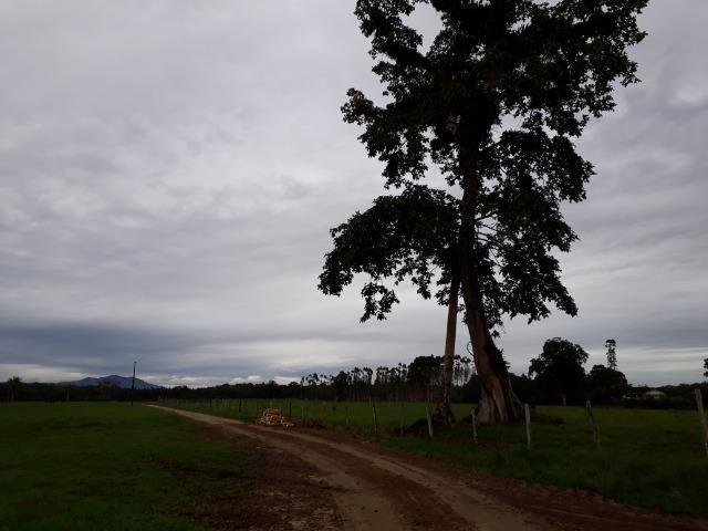 Fazenda Plana em Itapoá com Valor de Ocasião, Aceita parte em Permuta - Foto 15