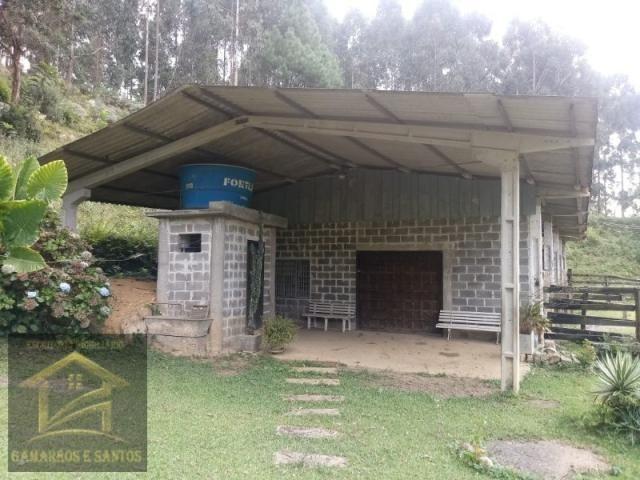 Aluga-se chácara com 18 alqueires com casa e estrutura para criação de gado - Foto 12