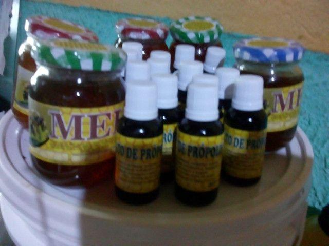 Agora pertinho de vc ,o mais puro mel silvestres distriuidora direto do apiário - Foto 5