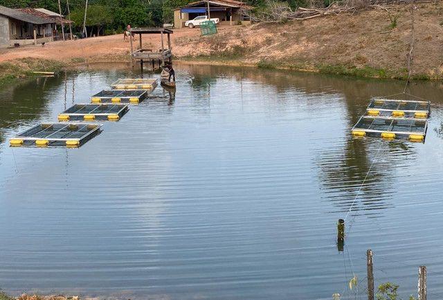 Tanque rede piscicultura