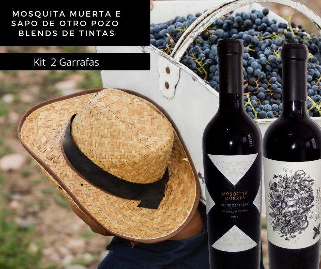 Vinhos Premium Argentinos kit 2 un. Mosquita muerta + Sapo de Otro Pozo. Blend de Tintas - Foto 3