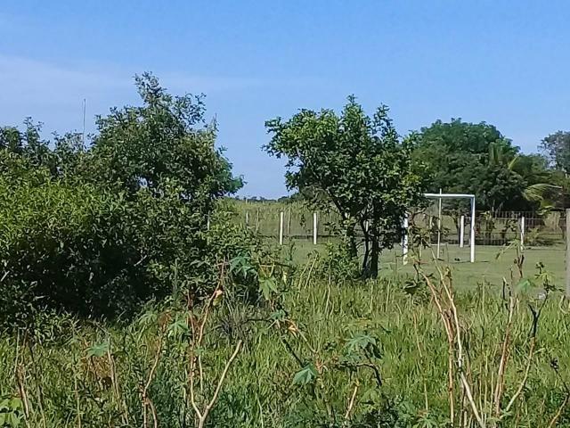 T Loteamento Localizado a 500m da Rodovia Amaral Peixoto - Foto 4