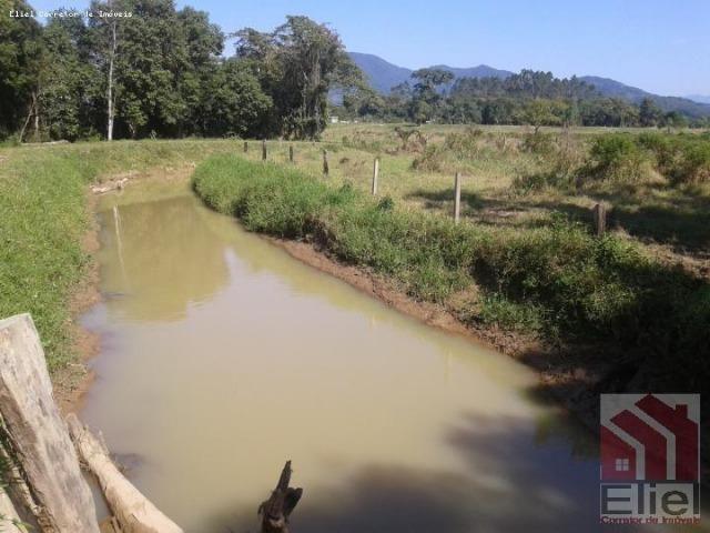 Fazenda Plana em Itapoá, Criação de Gado ou Plantio, Aceita Parte em Permuta - Foto 8