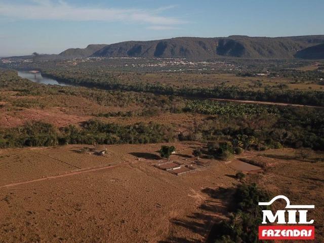 4 km de margens do Rio Araguaia. Fazenda 96 alqueires 464.64 Hectares - Aragarças-GO - Foto 8